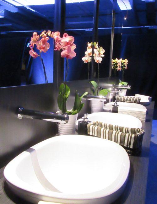 Produzione bagni chimici mobili